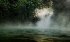 Dòng sông nước sôi 97 độ C trong rừng mưa Amazon