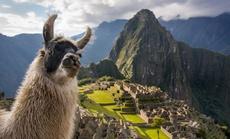 """Mở cửa đường mòn dẫn đến """"thành phố bị mất của người Inca"""""""