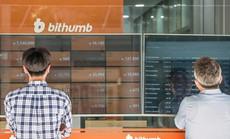 """Hàn Quốc """"khai tử"""" hàng loạt sàn tiền ảo, nhà đầu tư """"tiền Kimchi"""" có thể mất trắng 2,6 tỉ USD"""