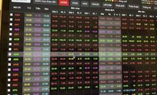 """Nhiều cổ phiếu họ """"Louis"""" giảm kịch sàn sau cảnh báo của Ủy ban Chứng khoán"""
