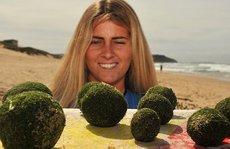 """Hàng trăm """"quả trứng kỳ lạ' dạt bờ biển Úc"""
