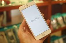 iPhone 6 Plus đầu tiên về VN giá 79 triệu đồng