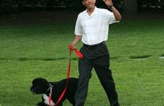 Tiết lộ tổng tài sản của Tổng thống Mỹ Obama