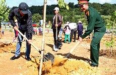 Du khách trồng cây cho TP Đà Lạt