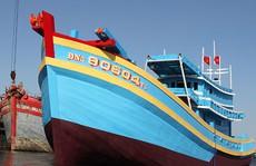 Ưu đãi đặc biệt cho ngư dân