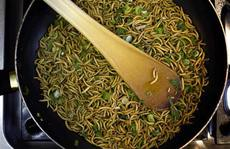 Trung Quốc sẽ cho phi hành gia ăn sâu gạo trên không gian