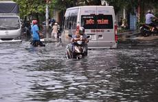 Năm 2015, trung tâm TP HCM hết ngập