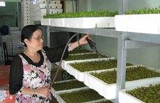 """Tỉ phú nông nghiệp công nghệ cao(*): """"Rau mầm bà Năm"""""""