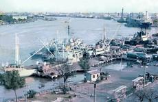 Cảng Sài Gòn phản hồi lời khai chấn động