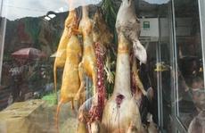 Vừa khai hội chùa Hương đã thấy 'chặt chém', thịt thú rừng