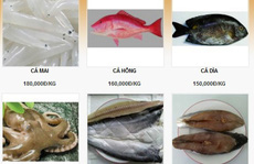 Rủ nhau lên mạng buôn hải sản