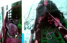 Trung Quốc tố Philippines bắn tàu cá