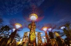 Cùng Saigontourist trải nghiệm Singapore theo cách riêng