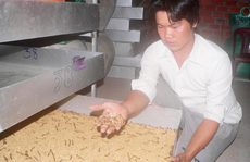 Cấm nuôi sâu gạo: Chỉ mới kiểm tra, nhắc nhở