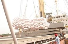 Xuất khẩu gạo 2015: Lo đầu ra