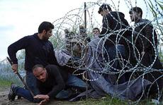 Tường rào tuyệt vọng
