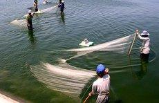 Bỏ quên kinh tế biển