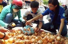 Người Sài Gòn 'giải cứu hành tây' giúp nông dân Đà Lạt