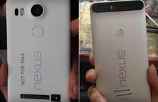 Bộ đôi Google Nexus 5X và 6P sẽ ra mắt vào 29-9