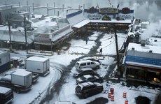 Mỹ lạnh tái tê, 10 người thiệt mạng vì bão tuyết