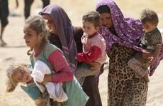 IS 'cưỡng hiếp các bé gái công khai'