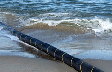 Cáp quang biển bảo trì hoàn tất, Internet trở lại bình thường