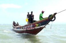 Tàu cá Trung Quốc 'hút' cạn cá Guinea