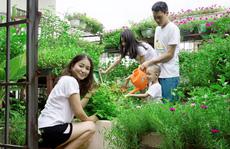 Thăm vườn rau sạch, hoa siêu đẹp giúp cả nhà gắn kết