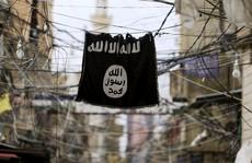 Sếp tình báo Mỹ thừa nhận khó đánh bại khủng bố ở Trung Đông