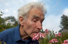 Trắc nghiệm mùi giúp chẩn đoán bệnh Alzheimer