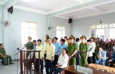 """7 cán bộ bảo vệ rừng nhận tiền để làm ngơ cho """"lâm tặc"""" phá rừng"""