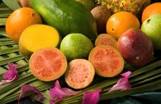 'Ngôn tình' của các loại quả
