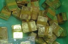 Giá vàng SJC tăng dữ dội vào chiều 23-7, tiến sát 55 riệu đồng/lượng
