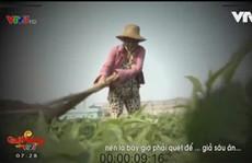 """Yêu cầu VTV giải trình về phóng sự """"Cây chổi quét rau"""""""