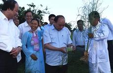 Phát triển Ninh Thuận theo hướng xanh - sạch