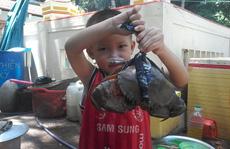Mua cua biển 150.000 đồng chỉ để… ăn vỏ