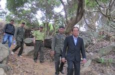 Phá rừng Sơn Trà: Đề nghị cách chức hạt trưởng, hạt phó kiểm lâm