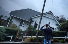 Cận cảnh con đường kỳ lạ gây sốt ở New Zealand