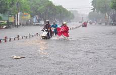 Nam Bộ đón mưa lớn đầu mùa
