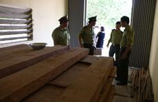 Giám đốc sở lấy trụ sở chứa gỗ trái phép