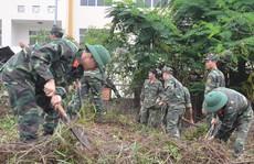 Hơn 26.000 chiến sĩ tham gia Chiến dịch Hành quân xanh