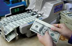 DongA Bank ưu đãi phí chuyển tiền nước ngoài
