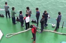 Tàu chở hơn 3.000 tấn gạo bị chìm, 11 thuyền viên được cứu sống
