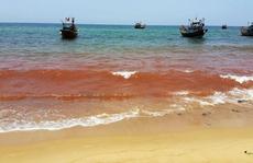 Vệt nước màu đỏ dài 1,5 km ở biển Quảng Bình đã biến mất
