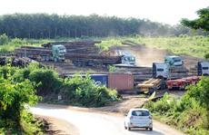 Phục kích bắt kho gỗ lớn nhất vùng cửa khẩu Bờ Y