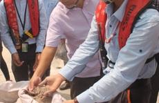 Bùn bauxite Formosa nhập từ Trung Quốc không phải xin phép