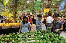 Việt Nam đang nhập gì từ Thái Lan?