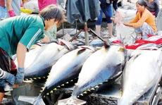 Hiện tượng cá chết không ảnh hưởng đến hải sản xuất khẩu