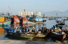 Đà Nẵng xóa sổ tàu cá gần bờ