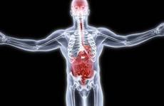 Vi khuẩn ruột liên quan với tâm thần